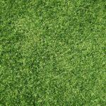 דשא סינטטי באר שבע